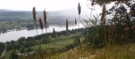 (#142) Woodley Range
