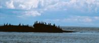 (#017) Canoe Islets