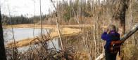 (#005) Lily Pad Lake