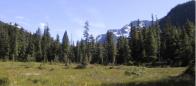 (#114) William's Creek