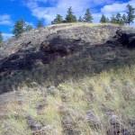 Trout creek hillside