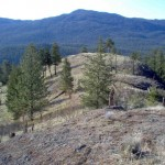 Ridge at Trout Creek