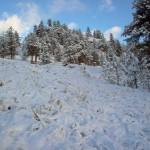 Trout Creek hills in winter