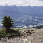 View W. from lookout: Dore R. (L. of tree), Zeidlers, Fraser R. - Below Sunbeam Cr. Ecological Reserve, near McBride, BC June 1991 - Art Carson photo
