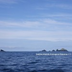 Panorama : Scott Islands Group- Sartine in  centre