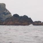 Solander Island Ecological Reserve