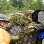 Adolf Ceska and Wynne Miles search crevices for mosses