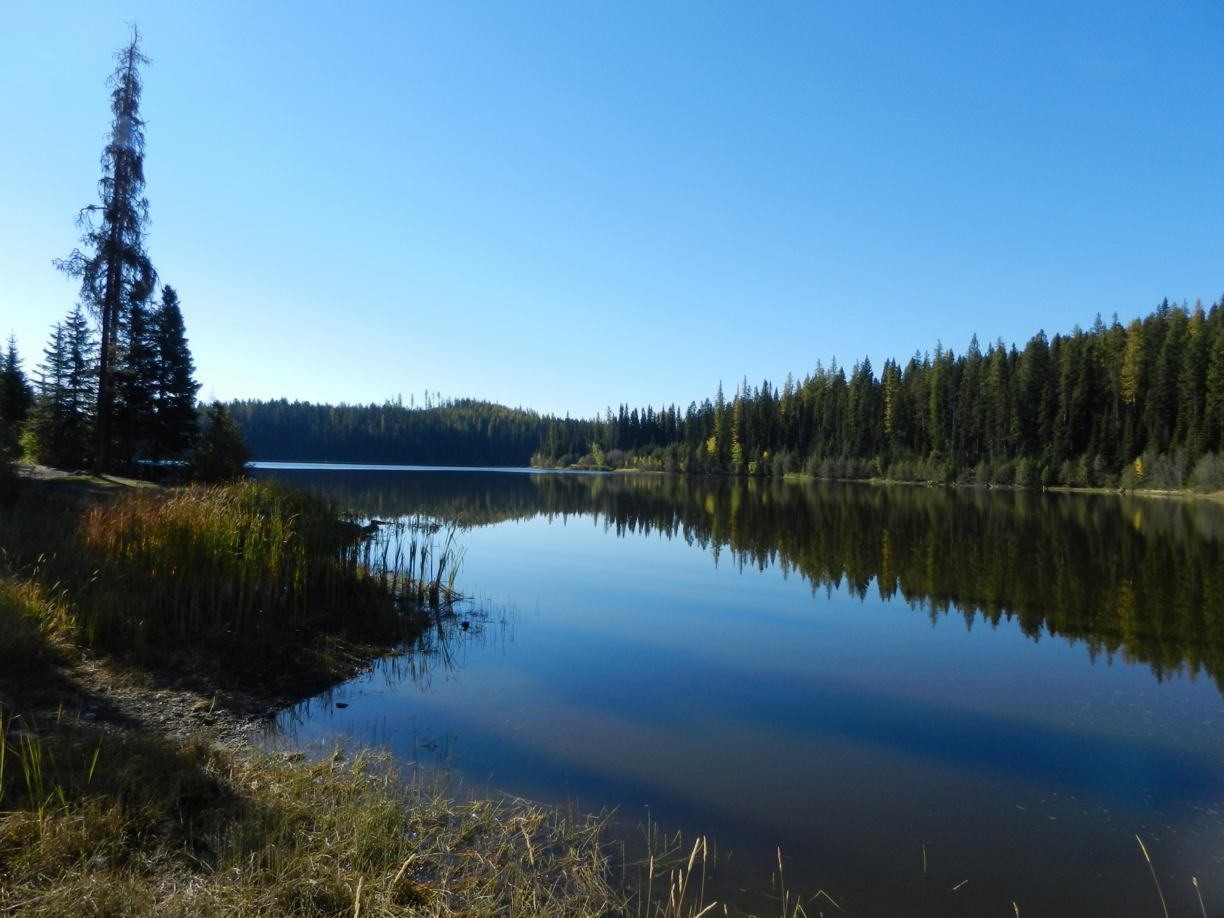 Browne Lake Ecological Reserve Image Gallery October, 2012