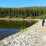The Dam at Browne Lake. The reserve starts half way up the forested area and runs over the ridge to the meadow.