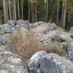 Rock mound.