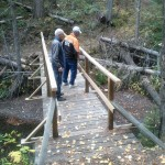 Foot-bridge built across the creek by someone without permit.
