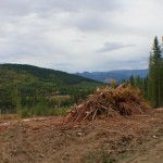 Rick Fairbairn shows Garry the clearcut in the watershed above Vance Creek.
