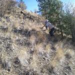Steep climb along north fence line.
