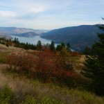 View to north part of Kalamalka Lake.