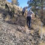 Climbing the steep fence line.