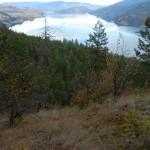 View north on Kalamalka Lake.