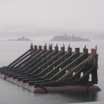 ER15 307, an artful photo from the Saturna ferry terminal