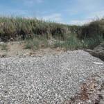 alpha-islands -erosion-4-biffard-2014