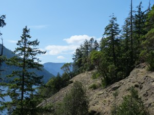 Comox lake Bluffs ER